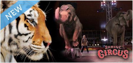 Shrine Circus Quebec