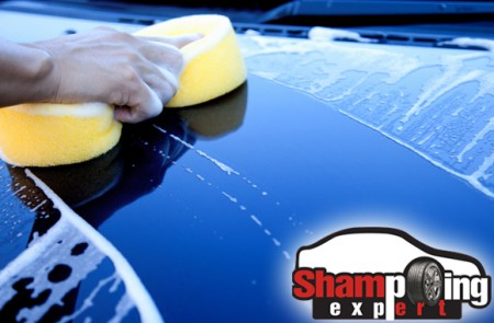 Shampoing Expert